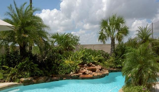 pool-landscaping-2-5898167