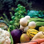 Practical Gardening Tips for the Autumn and Winter