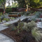 Easy Landscaping Design Ideas For Beginners To Create An Expensive Cactus Beds Look