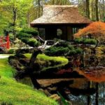 5 Simple But Different Backyard Landscaping Ideas
